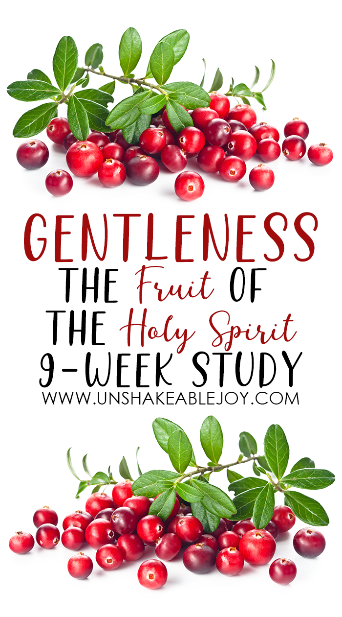 Fruit of the Spirit GENTLENESS